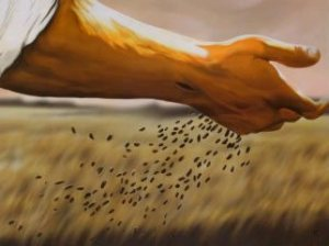 A wounded hand sowing seeds